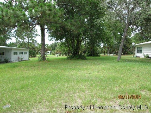 Address Not Published, Brooksville, FL 34613 (MLS #2153144) :: The Hardy Team - RE/MAX Marketing Specialists