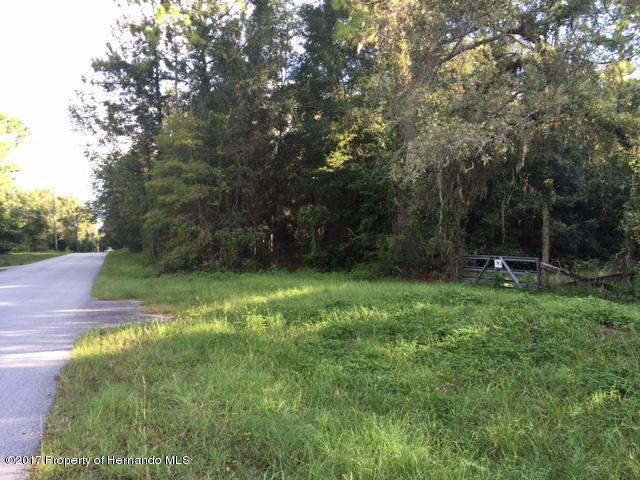 6195 Casson Street, Brooksville, FL 34604 (MLS #2186058) :: The Hardy Team - RE/MAX Marketing Specialists