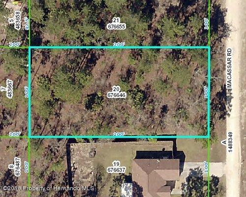 Lot 20 Macassar, Blk 94 Road, Weeki Wachee, FL 34614 (MLS #2190161) :: The Hardy Team - RE/MAX Marketing Specialists