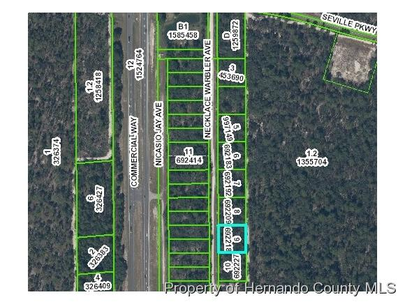 0 Necklace Warbler Avenue, Weeki Wachee, FL 34613 (MLS #2190175) :: The Hardy Team - RE/MAX Marketing Specialists