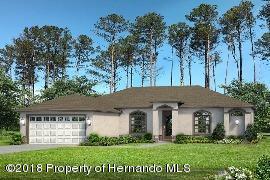 12412 Neeld, Weeki Wachee, FL 34614 (MLS #2190373) :: The Hardy Team - RE/MAX Marketing Specialists