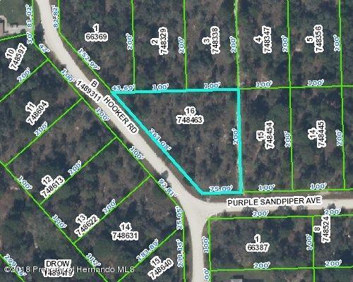0 Purple Sandpiper Avenue, Weeki Wachee, FL 34614 (MLS #2196868) :: The Hardy Team - RE/MAX Marketing Specialists