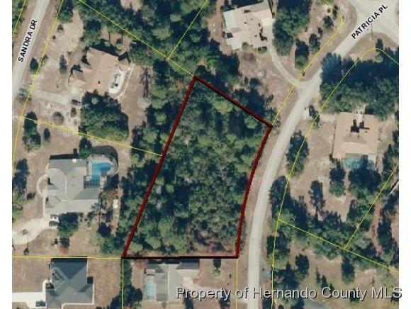 5425 Patricia Place, Weeki Wachee, FL 34607 (MLS #2130121) :: Premier Home Experts