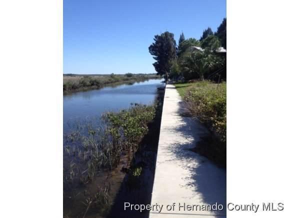 10541 Pine Island Drive, Weeki Wachee, FL 34607 (MLS #2136345) :: Premier Home Experts
