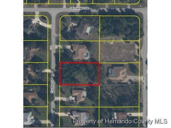 0 Floral Drive Lot 9, Spring Hill, FL 34607 (MLS #2155969) :: Premier Home Experts