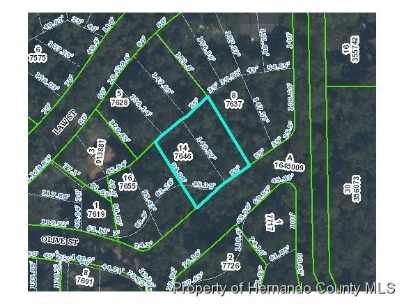 0 Olive Street, Brooksville, FL 34601 (MLS #2164443) :: Premier Home Experts