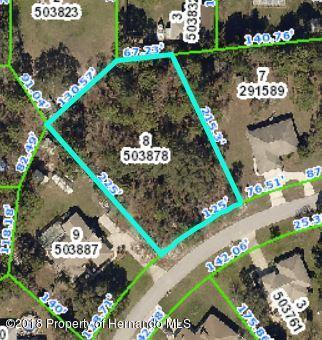 00 Ferendina Way, Spring Hill, FL 34609 (MLS #2192040) :: The Hardy Team - RE/MAX Marketing Specialists