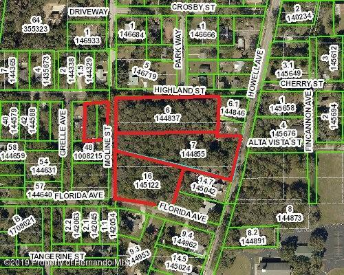 O Howell Avenue, Brooksville, FL 34601 (MLS #2197824) :: The Hardy Team - RE/MAX Marketing Specialists
