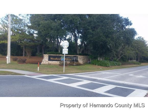 US 19 Us Highway 19, Weeki Wachee, FL 34613 (MLS #2175425) :: The Hardy Team - RE/MAX Marketing Specialists