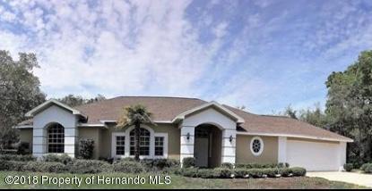 9477 Wilderness Trail, Weeki Wachee, FL 34613 (MLS #2192404) :: The Hardy Team - RE/MAX Marketing Specialists