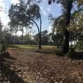 7 Magnolia Blossom Drive - Photo 1