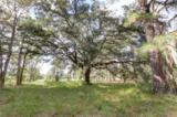 LOT 68 Telfair Plantation - Photo 10