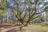 LOT 41 Telfair Plantation - Photo 12