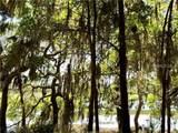 62 Winding Oak Drive - Photo 7