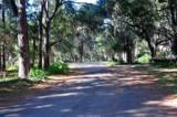 45 Cameroon Drive - Photo 6