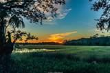 1725 Longfield Drive - Photo 41