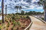 43 Forest Beach Drive - Photo 19