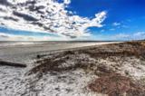 43 Forest Beach Drive - Photo 25