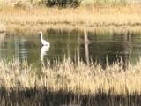 8 Gull Point Rd - Photo 8