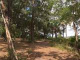 10 Ibis Lane - Photo 6
