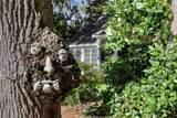 5 Magnolia Blossom Drive - Photo 50