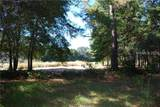 3 Fox Squirrel Court - Photo 4