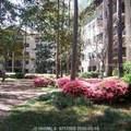 300 Woodhaven Drive - Photo 3