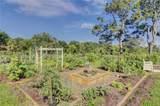 50 Planters Wood Drive - Photo 14
