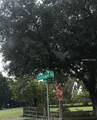 Parcel A Firetower Road - Photo 1