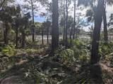7 Winding Oak Court - Photo 4