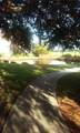 15 Mossy Oaks Lane - Photo 12
