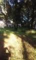 15 Mossy Oaks Lane - Photo 3