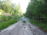 10245 Jefferies Highway - Photo 1