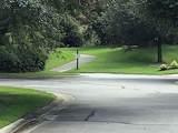 125 Lake Somerset Circle - Photo 39