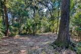 19 Plum Thicket Road - Photo 10
