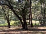76 Grande Oaks Way - Photo 7