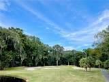 121 Winding Oak Drive - Photo 8