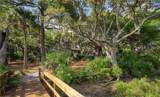 22 Sparrow Nest Point - Photo 44