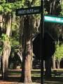 52 Sweet Olive Drive - Photo 5