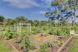 50 Planters Wood Drive - Photo 13