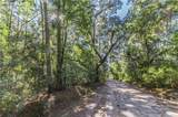 15 Osmunda Drive - Photo 4