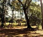 11 Indigo Plantation Road - Photo 4