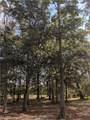11 Indigo Plantation Road - Photo 5