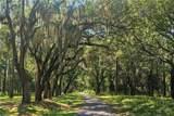 Avenue Of Oaks - Photo 6