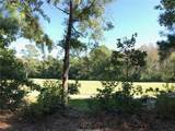 4 Gordonia Tree Court - Photo 5