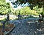 14 Welsh Pony Lane - Photo 30