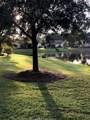 11 Cypress Vine Court - Photo 3