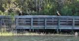42 Blue Trail Court - Photo 36