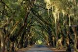 17 Summerton Drive - Photo 40