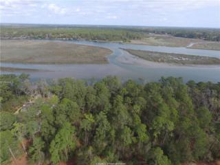 67 Trout Hole Road, Bluffton, SC 29910 (MLS #359282) :: Collins Group Realty